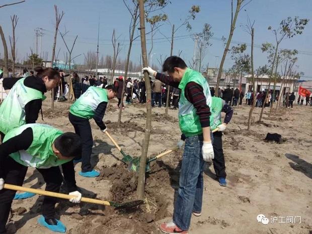 2018年上海沪工阀门厂3.12植树节活动(图4)